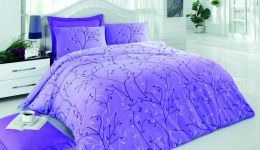 Oliva lilac